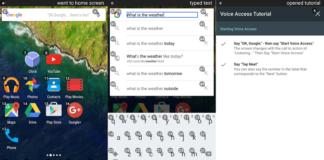 Google Voice Access Beta